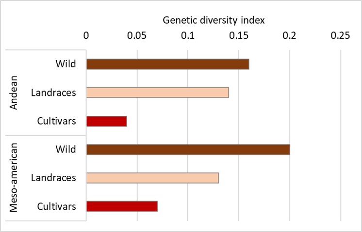 Bar graph showing reduction in genetic diversity from wild species to landraces to cultivars of common bean (Phaseolus vulgaris) in the Andean and Meso-American centers of origin. Redrawn from Gepts, 2018.